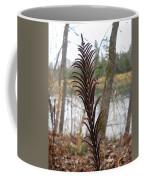 Dry Fern Stem In November Coffee Mug