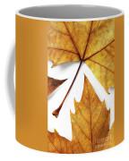 Dry Leafs Coffee Mug by Carlos Caetano