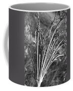 Dry Queen Anns Lace II Coffee Mug