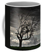 Dry Sunset Coffee Mug