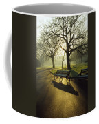 Dublin - Parks, St. Stephens Green Coffee Mug