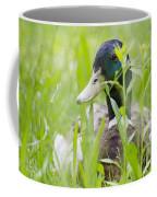 Duck In The Green Grass Coffee Mug