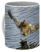 Duck Landing Coffee Mug