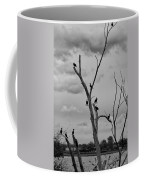 Ducks 9248 Coffee Mug