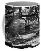 Ducks In The Shade In Black And White Coffee Mug