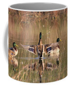 Ducks Of Douglas Coffee Mug
