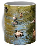 Ducks On The Water Coffee Mug