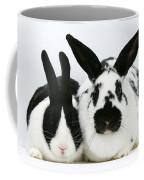 Dutch Rabbits Coffee Mug