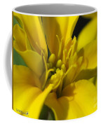 Dwarf French Marigold In Disco Yellow Coffee Mug