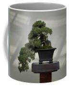 Dwarf Japanese Garden Juniper Coffee Mug