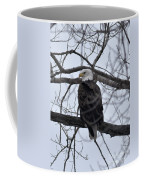 Eagle In The Wild Coffee Mug
