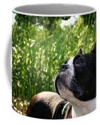 Eagle Scouting Coffee Mug