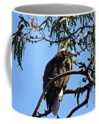 Eagle Under Cover Coffee Mug