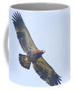 Eaglet 2012 Coffee Mug
