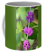 Early Amethyst Coffee Mug