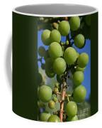 Early Grapes Coffee Mug