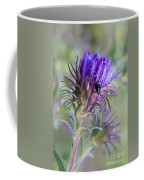 Early Knapweed Coffee Mug