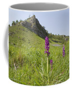 Early Purple Orchids Coffee Mug
