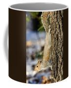 Eastern Gray Squirrel Sciurus Coffee Mug