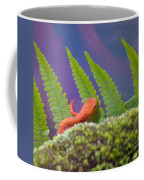 Eastern Newt 1 Coffee Mug