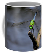 Eastern Pondhawk Coffee Mug