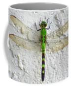 Eastern Pondhawk Dragonfly Coffee Mug