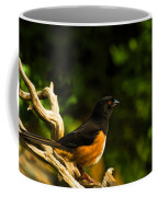 Eastern Towhee Coffee Mug