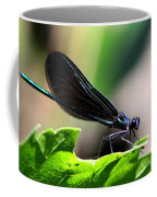 Ebony Jewelwing In The Spotlight Coffee Mug