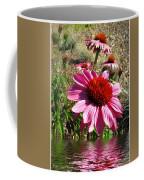 Echinacea In Water Coffee Mug