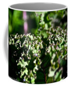 Edge Of Kale Coffee Mug