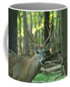 Eight Point And Fawn_9532_4367 Coffee Mug