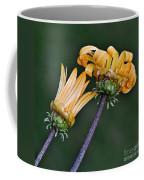 Elegant Daisies Coffee Mug