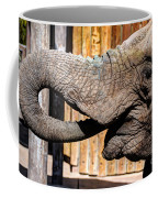 Elephant Feeding Time At The Zoo Coffee Mug