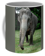 Elephant Greet Coffee Mug