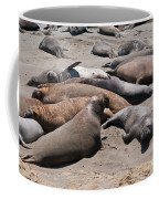 Elephant Seal Colony On Big Sur  Coffee Mug