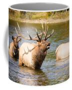 Elk Bugle Estes Lake Colorado Coffee Mug