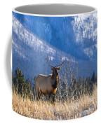 Elk In Forest, Banff National Park Coffee Mug