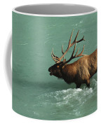 Elk In The Athabasca River Coffee Mug