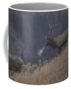 Elk Or Wapiti Bull On A Hillside Coffee Mug by Raymond Gehman