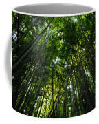 Enchanted Forest Haleakala National Park Coffee Mug