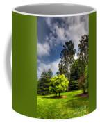 English Countryside  Coffee Mug by Adrian Evans
