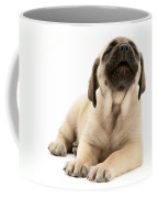 English Mastiff Puppy Coffee Mug