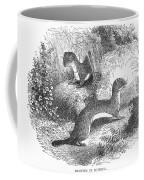 Ermines In Summer Coffee Mug