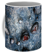 Eroded Rock With Dried Leaves Coffee Mug