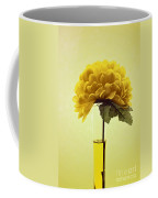 Estillo - S03-01q2 Coffee Mug by Variance Collections