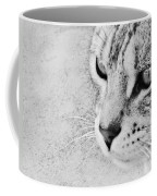 Eternal Stare Down Coffee Mug