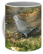 Eurasian Dove Coffee Mug