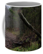 Evening In A Pine Forest Coffee Mug