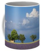 Evening In Provence Coffee Mug