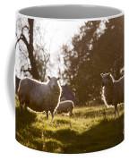 Evening On The Meadow Coffee Mug